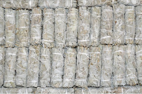 Baghete Salvie Alba mici (Californian White Sage Wands) (10buc.)