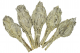 Bagheta Salvie Alba Torta (Torch Californian White Sage)